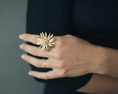 Daisy Ring- Collected Edition